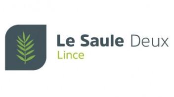 Logo Le Saule Deux