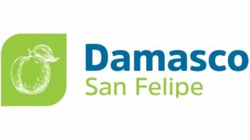 Logo Damasco