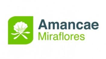 Logo Amancae
