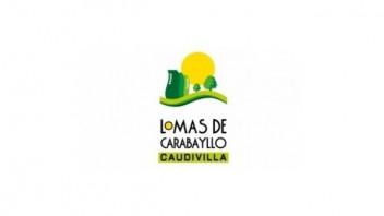 Logo Lomas de Carabayllo Etapa 3