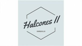 Logo Halcones II